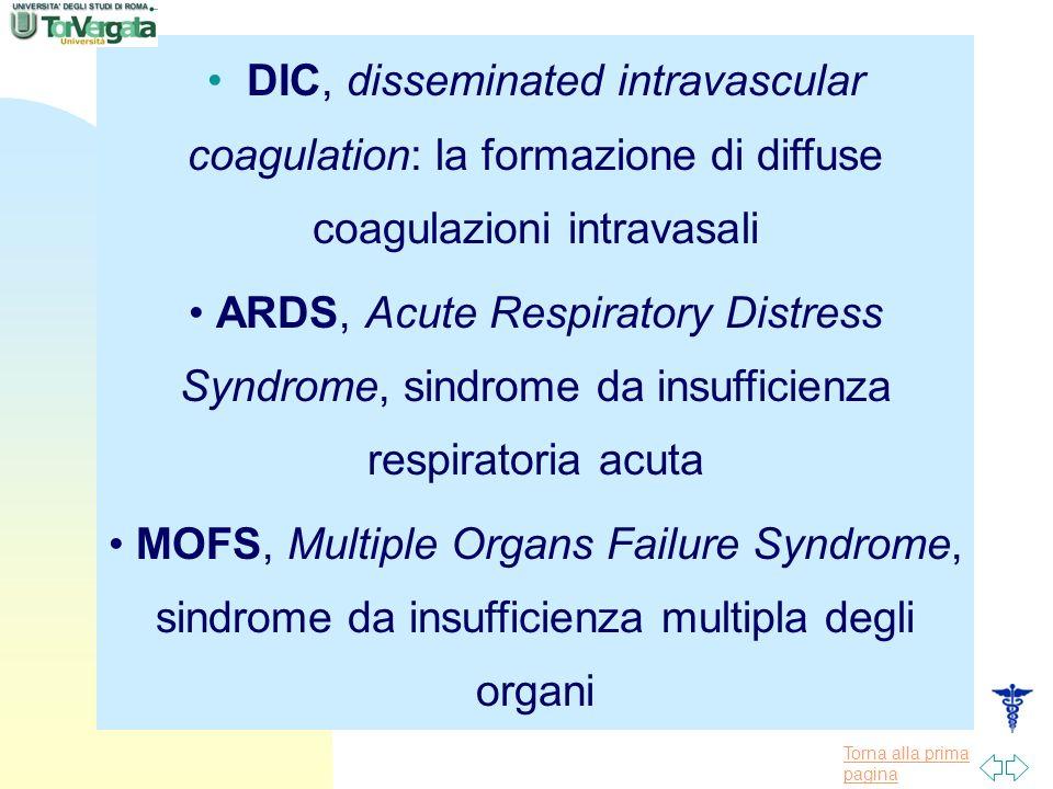 Torna alla prima pagina DIC, disseminated intravascular coagulation: la formazione di diffuse coagulazioni intravasali ARDS, Acute Respiratory Distres