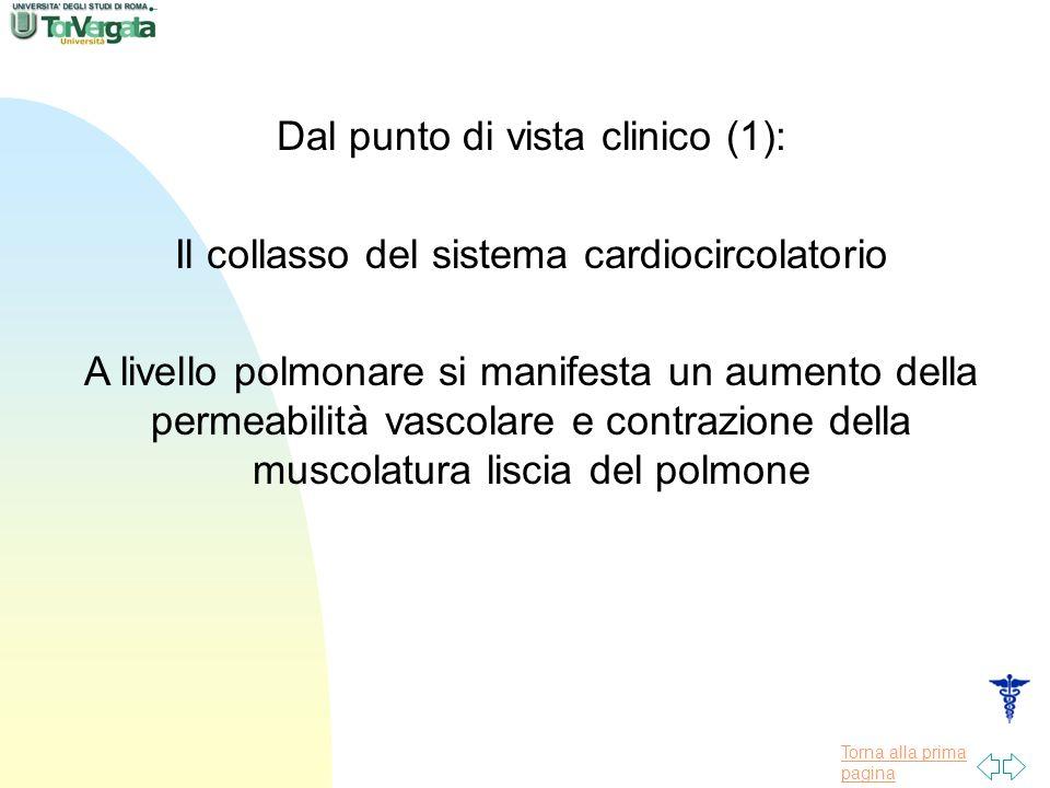 Torna alla prima pagina Dal punto di vista clinico (1): Il collasso del sistema cardiocircolatorio A livello polmonare si manifesta un aumento della permeabilità vascolare e contrazione della muscolatura liscia del polmone