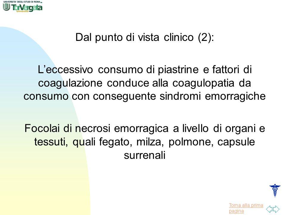 Torna alla prima pagina Dal punto di vista clinico (2): Leccessivo consumo di piastrine e fattori di coagulazione conduce alla coagulopatia da consumo