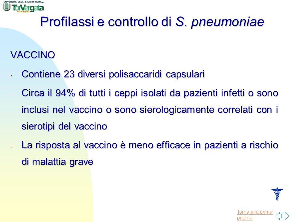 Torna alla prima pagina Profilassi e controllo di S. pneumoniae VACCINO Contiene 23 diversi polisaccaridi capsulari Contiene 23 diversi polisaccaridi
