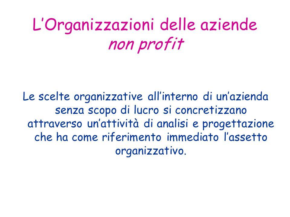 LOrganizzazioni delle aziende non profit Le scelte organizzative allinterno di unazienda senza scopo di lucro si concretizzano attraverso unattività di analisi e progettazione che ha come riferimento immediato lassetto organizzativo.