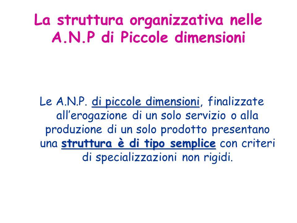 di piccole dimensioni struttura è di tipo semplice Le A.N.P.