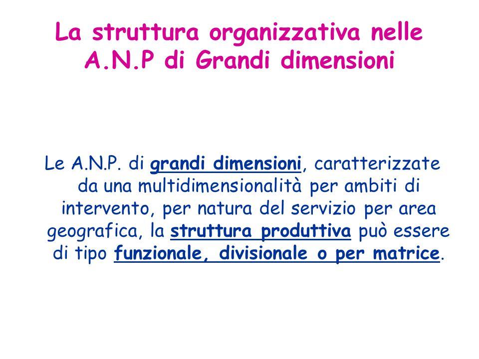 Le A.N.P. di grandi dimensioni, caratterizzate da una multidimensionalità per ambiti di intervento, per natura del servizio per area geografica, la st