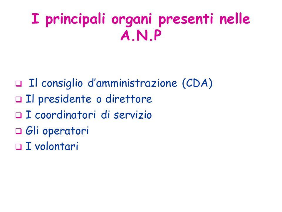 Il consiglio damministrazione (CDA) Il presidente o direttore I coordinatori di servizio Gli operatori I volontari I principali organi presenti nelle A.N.P