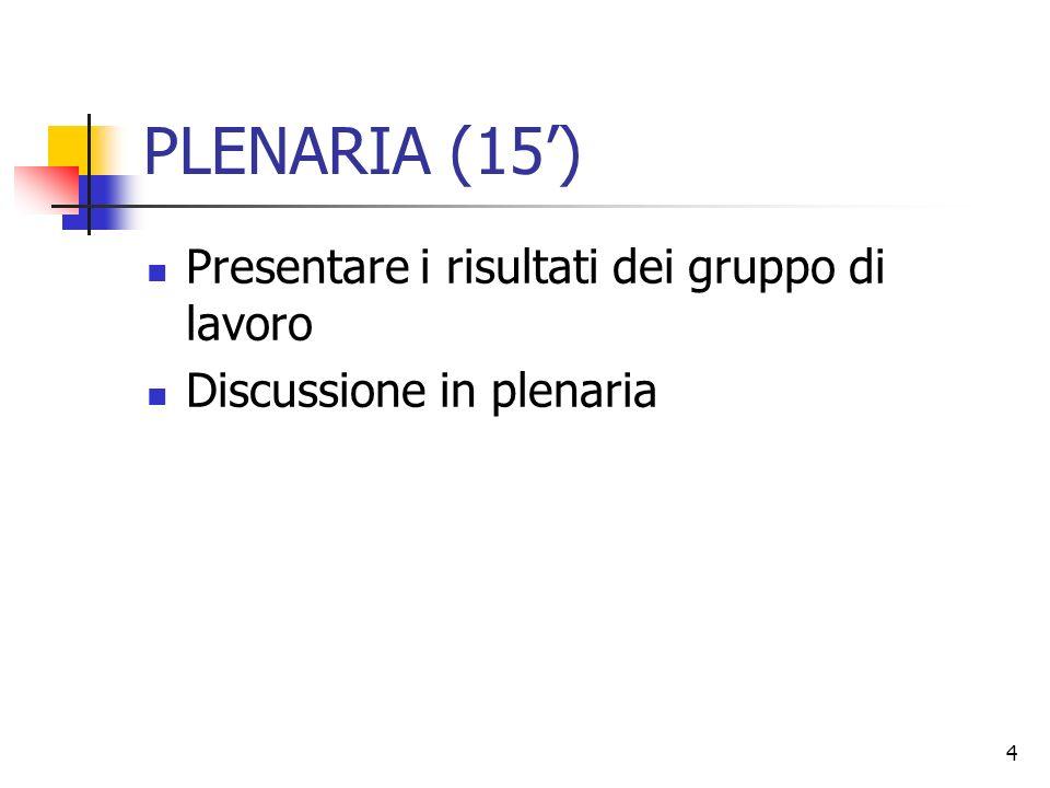 4 PLENARIA (15) Presentare i risultati dei gruppo di lavoro Discussione in plenaria