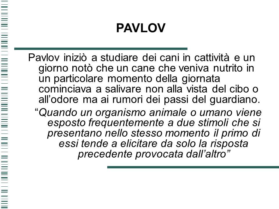 Pavlov iniziò a studiare dei cani in cattività e un giorno notò che un cane che veniva nutrito in un particolare momento della giornata cominciava a s