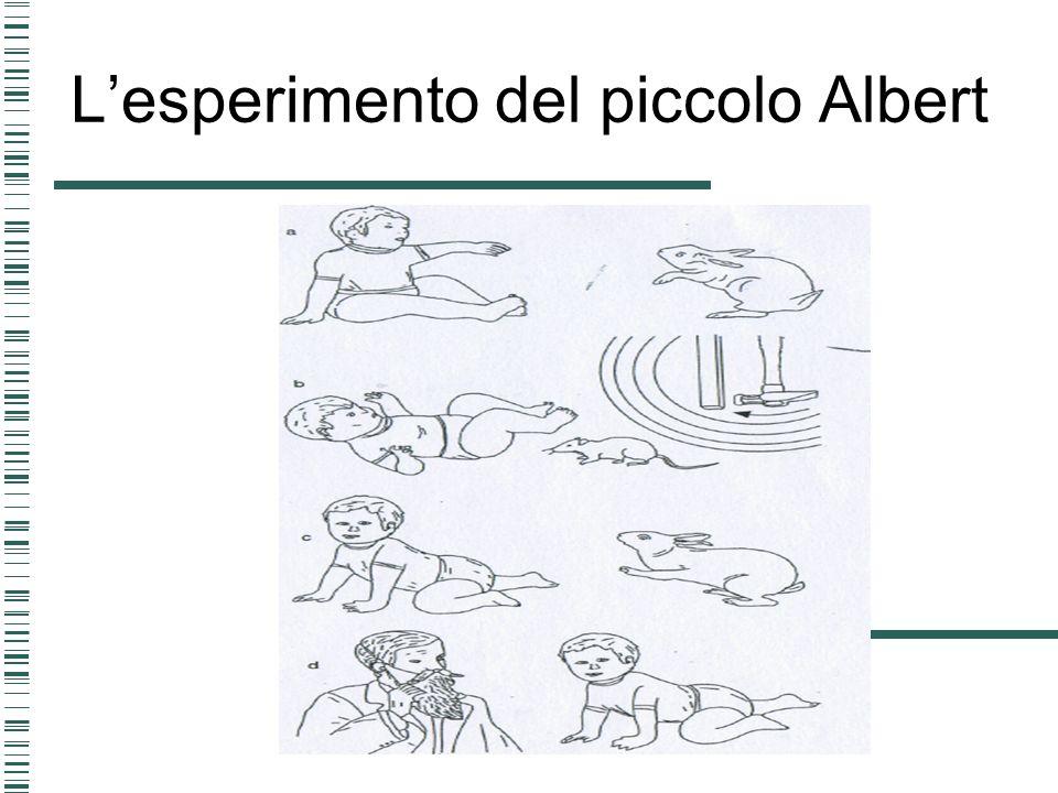 Lesperimento del piccolo Albert