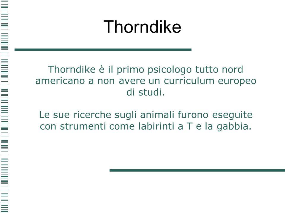 Thorndike è il primo psicologo tutto nord americano a non avere un curriculum europeo di studi. Le sue ricerche sugli animali furono eseguite con stru