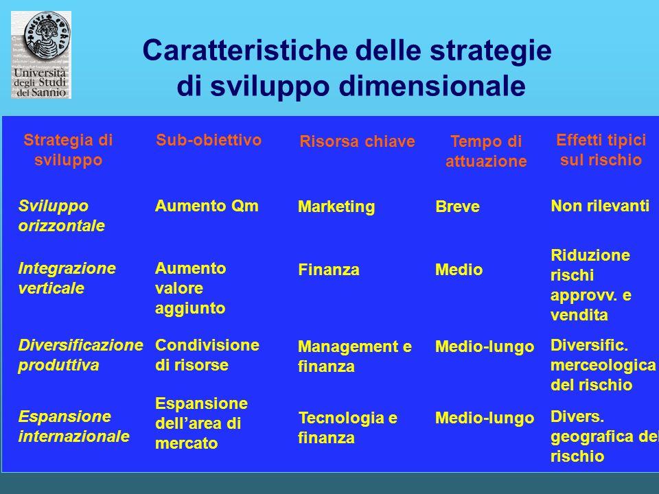 14 Caratteristiche delle strategie di sviluppo dimensionale Sviluppo orizzontale Integrazione verticale Diversificazione produttiva Espansione interna