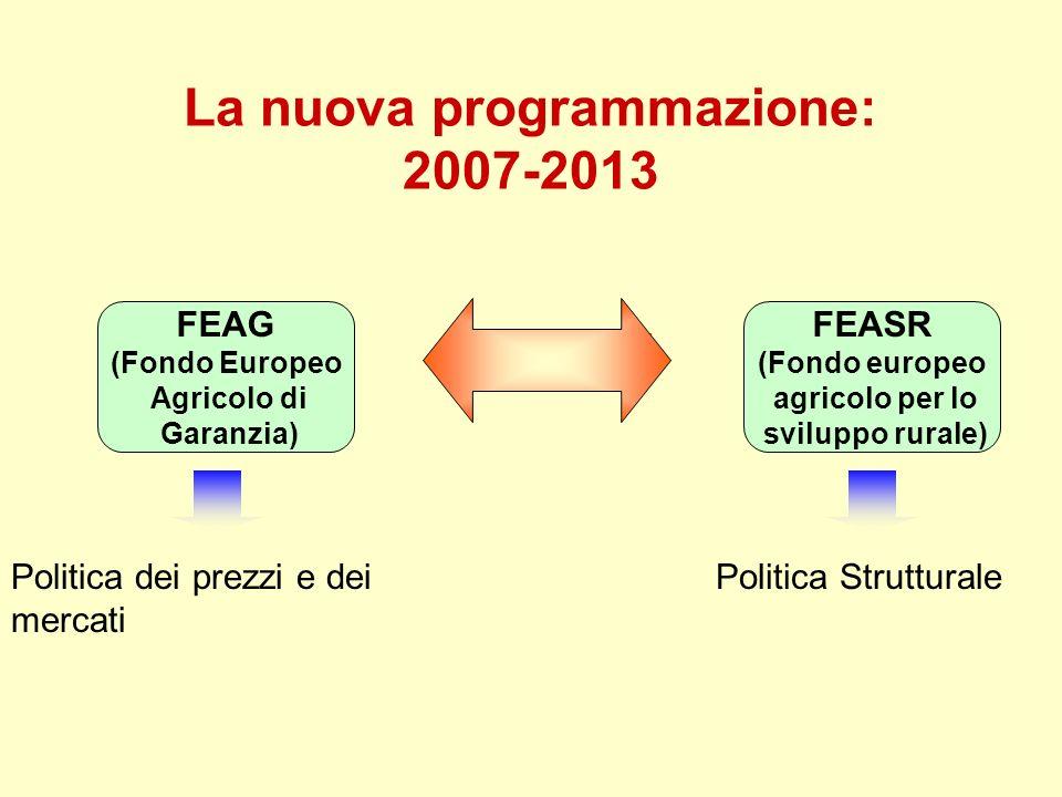 La nuova programmazione: 2007-2013 DUE FONDI FEAG (Fondo Europeo Agricolo di Garanzia) FEASR (Fondo europeo agricolo per lo sviluppo rurale) Politica