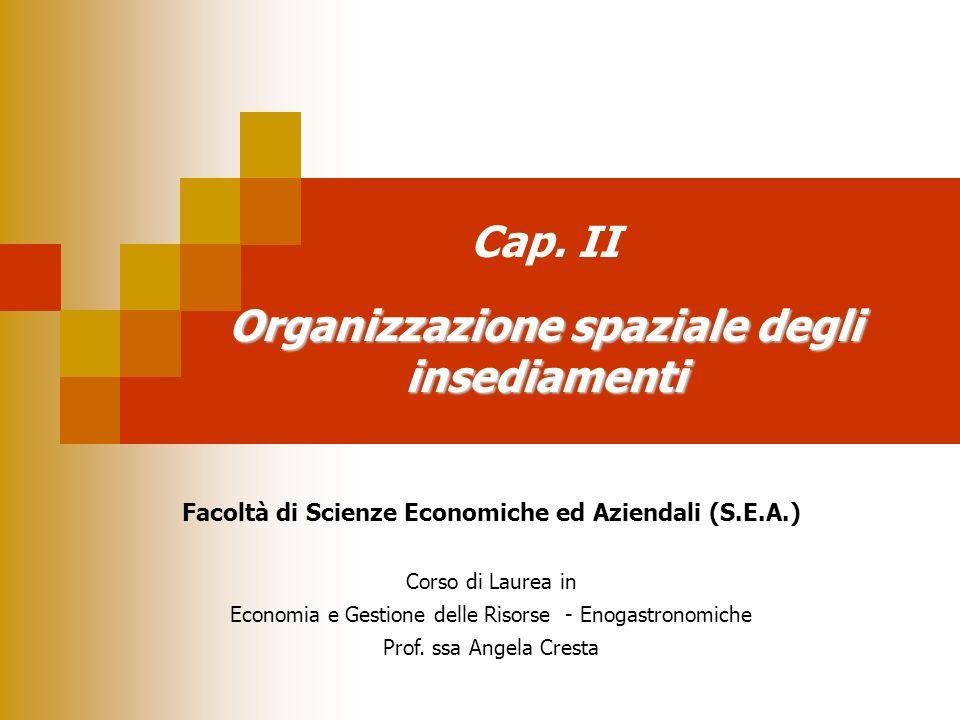 Organizzazione spaziale degli insediamenti Cap. II Organizzazione spaziale degli insediamenti Facoltà di Scienze Economiche ed Aziendali (S.E.A.) Cors