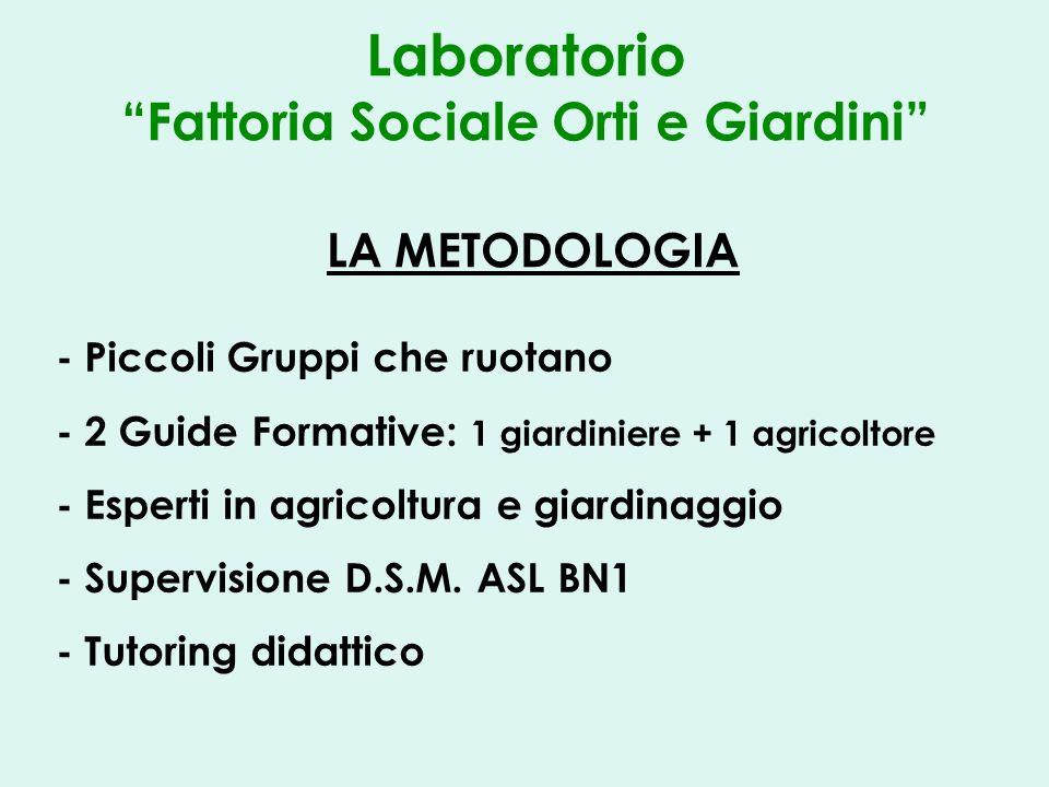 Laboratorio Fattoria Sociale Orti e Giardini LA METODOLOGIA - Piccoli Gruppi che ruotano - 2 Guide Formative: 1 giardiniere + 1 agricoltore - Esperti in agricoltura e giardinaggio - Supervisione D.S.M.