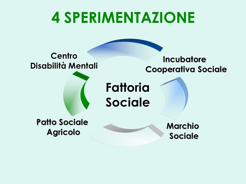 4 SPERIMENTAZIONEIncubatore Cooperativa Sociale MarchioSociale Patto Sociale Agricolo Fattoria Sociale Centro Disabilità Mentali
