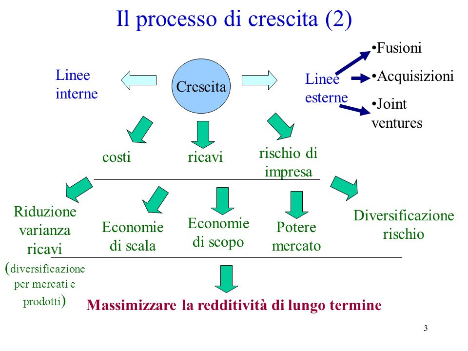 3 Il processo di crescita (2) Crescita Massimizzare la redditività di lungo termine costiricavi rischio di impresa Economie di scopo Economie di scala