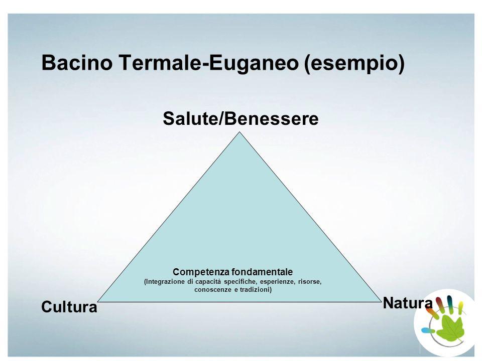 Bacino Termale-Euganeo (esempio) Salute/Benessere Competenza fondamentale (Integrazione di capacità specifiche, esperienze, risorse, conoscenze e trad