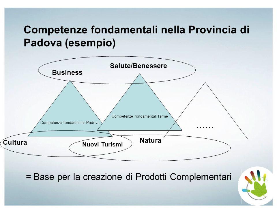 Competenze fondamentali nella Provincia di Padova (esempio) Salute/Benessere Cultura Natura Business Nuovi Turismi Competenze fondamentali Padova Comp
