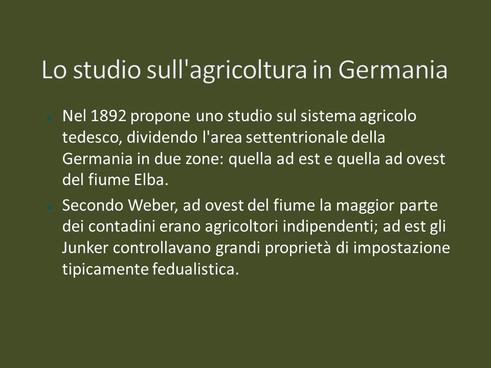 Nel 1892 propone uno studio sul sistema agricolo tedesco, dividendo l'area settentrionale della Germania in due zone: quella ad est e quella ad ovest