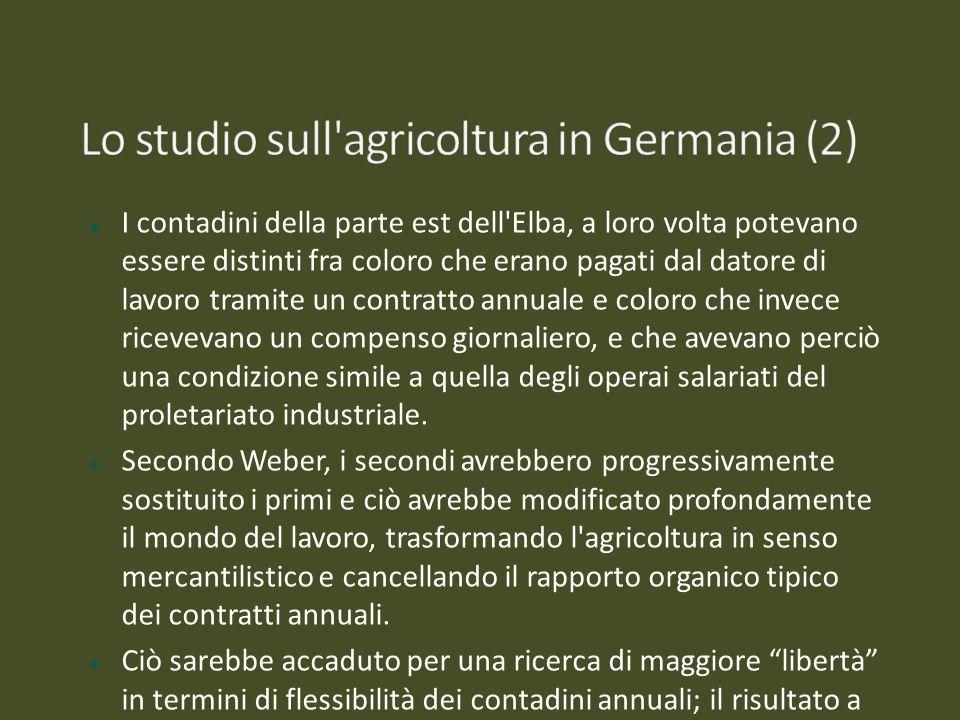 I contadini della parte est dell'Elba, a loro volta potevano essere distinti fra coloro che erano pagati dal datore di lavoro tramite un contratto ann