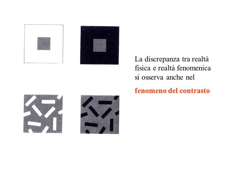 La discrepanza tra realtà fisica e realtà fenomenica si osserva anche nel fenomeno del contrasto