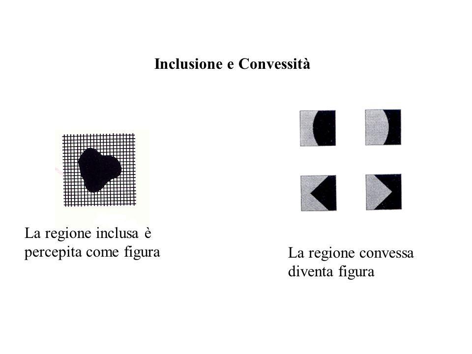 La regione inclusa è percepita come figura La regione convessa diventa figura Inclusione e Convessità