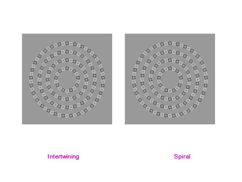 IntertwiningSpiral