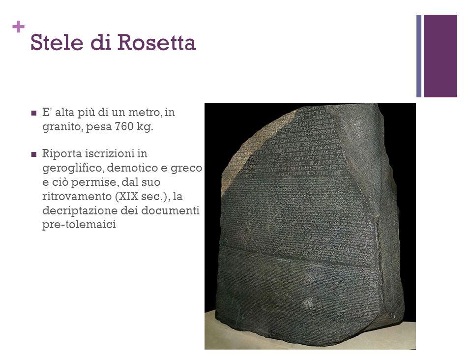 + Stele di Rosetta E alta più di un metro, in granito, pesa 760 kg. Riporta iscrizioni in geroglifico, demotico e greco e ciò permise, dal suo ritrova