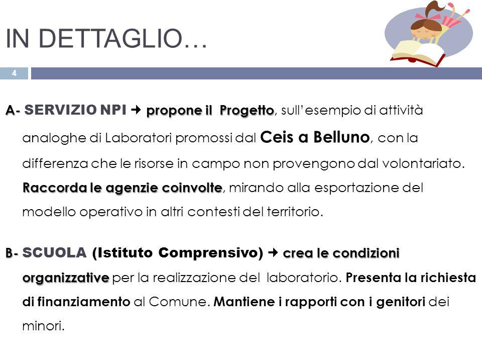4 A-propone il Progetto Raccorda le agenzie coinvolte A- SERVIZIO NPI propone il Progetto, sullesempio di attività analoghe di Laboratori promossi dal