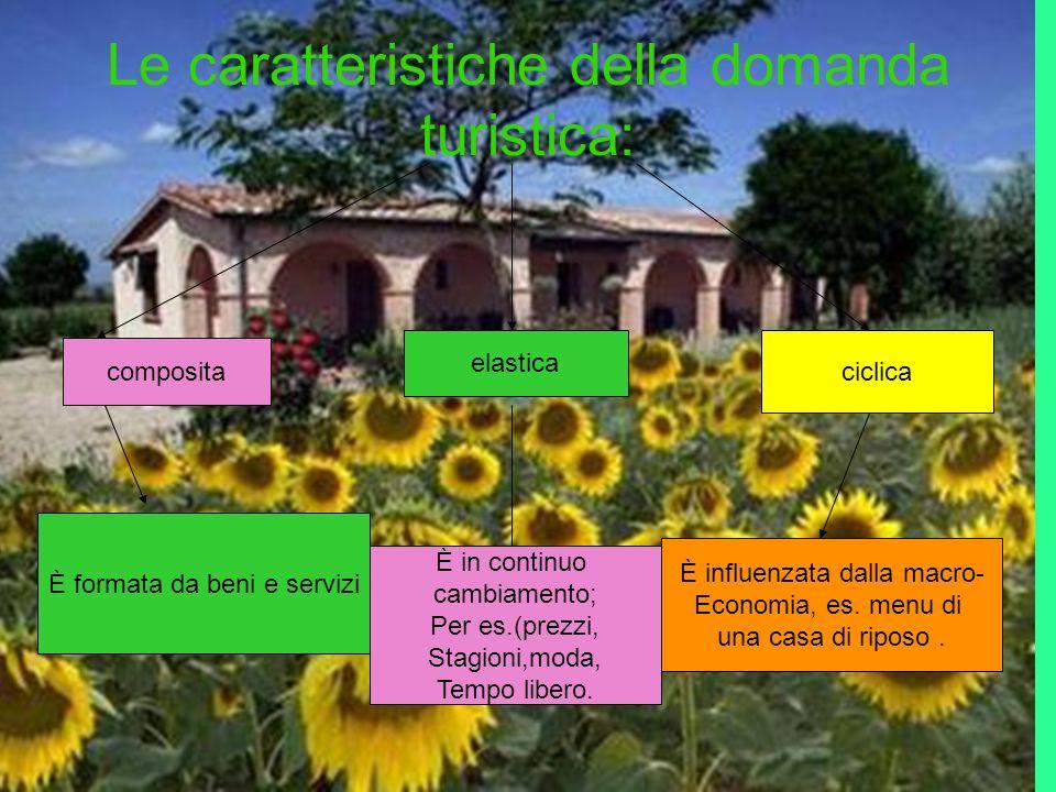 Le caratteristiche della domanda turistica: composita elastica ciclica È formata da beni e servizi È in continuo cambiamento; Per es.(prezzi, Stagioni,moda, Tempo libero.