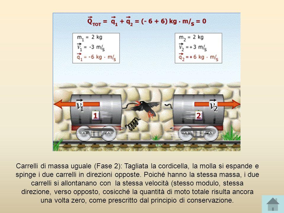 Carrelli di massa uguale (Fase 2): Tagliata la cordicella, la molla si espande e spinge i due carrelli in direzioni opposte. Poiché hanno la stessa ma