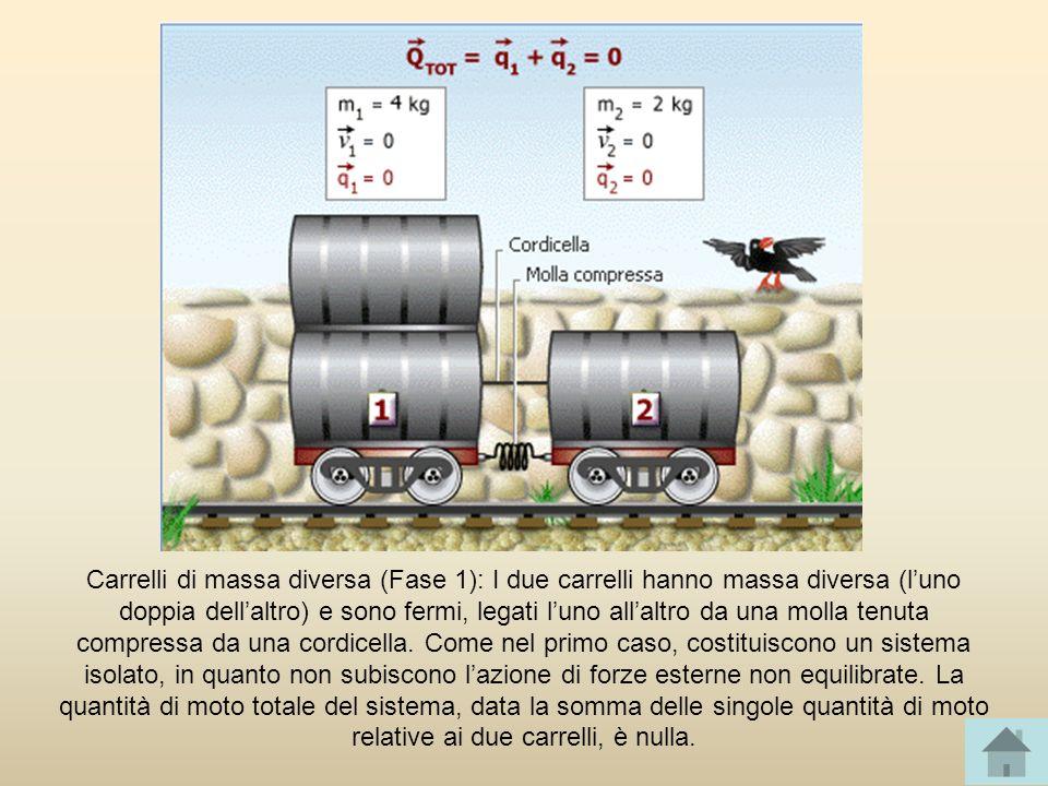 Carrelli di massa diversa (Fase 1): I due carrelli hanno massa diversa (luno doppia dellaltro) e sono fermi, legati luno allaltro da una molla tenuta