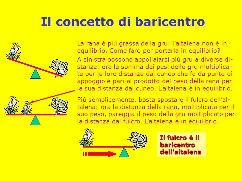 Il concetto di baricentro La rana è più grassa della gru: laltalena non è in equilibrio.