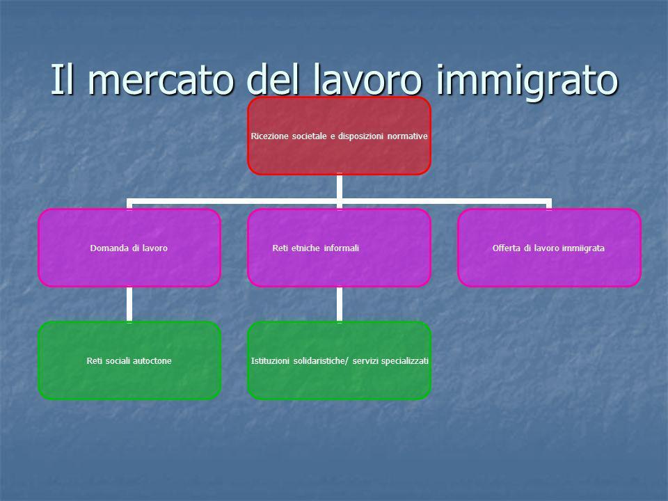 Il mercato del lavoro immigrato Ricezione societale e disposizioni normative Domanda di lavoro Reti sociali autoctone Reti etniche informali Istituzio