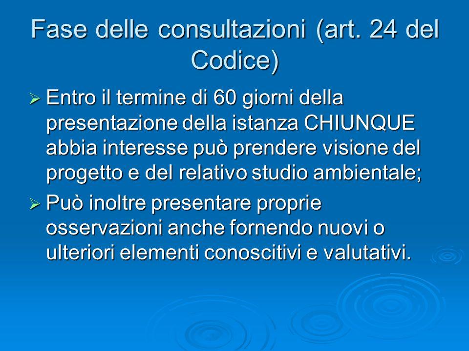 Fase delle consultazioni (art. 24 del Codice) Entro il termine di 60 giorni della presentazione della istanza CHIUNQUE abbia interesse può prendere vi
