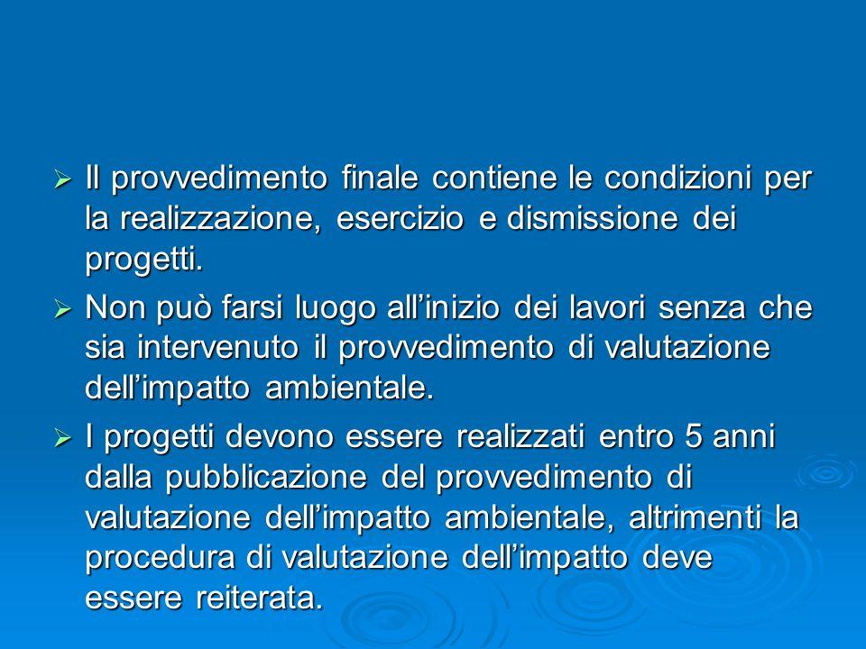 Il provvedimento finale contiene le condizioni per la realizzazione, esercizio e dismissione dei progetti. Il provvedimento finale contiene le condizi
