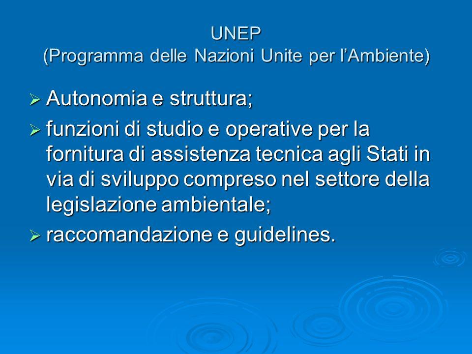 UNEP (Programma delle Nazioni Unite per lAmbiente) Autonomia e struttura; Autonomia e struttura; funzioni di studio e operative per la fornitura di as