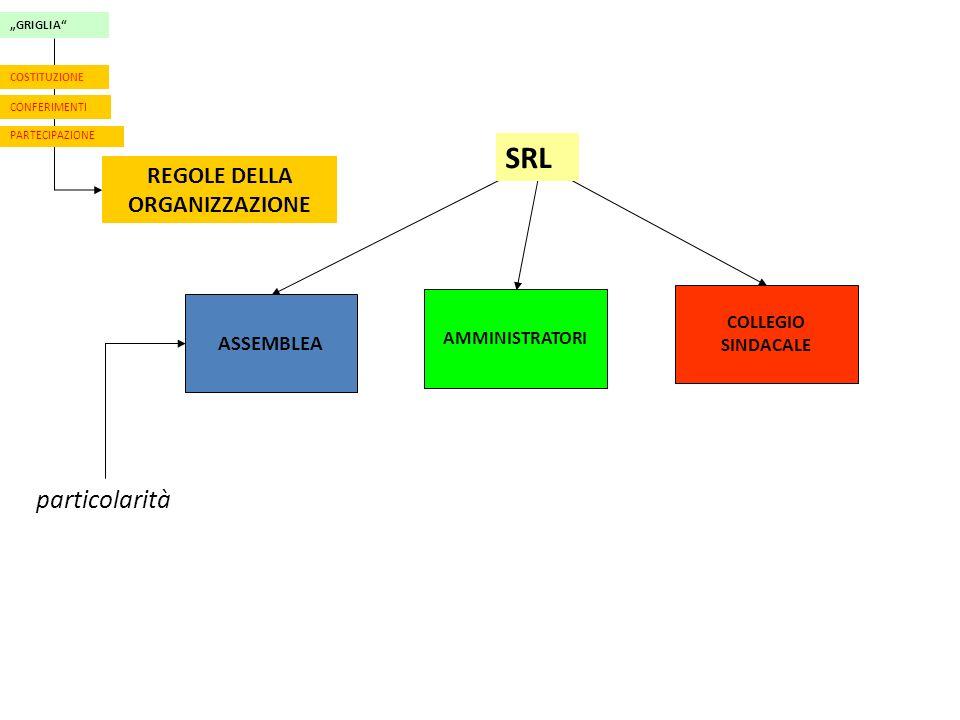GRIGLIA CONFERIMENTI PARTECIPAZIONE REGOLE DELLA ORGANIZZAZIONE COSTITUZIONE ASSEMBLEA AMMINISTRATORI COLLEGIO SINDACALE SRL particolarità