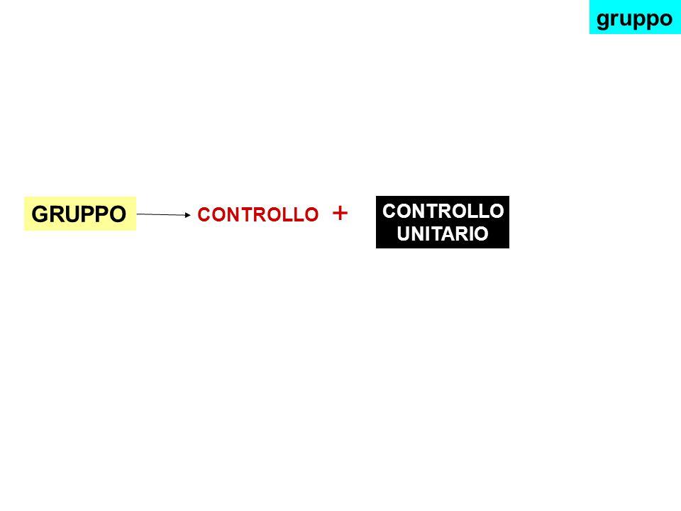 CONTROLLO + GRUPPO CONTROLLO UNITARIO gruppo