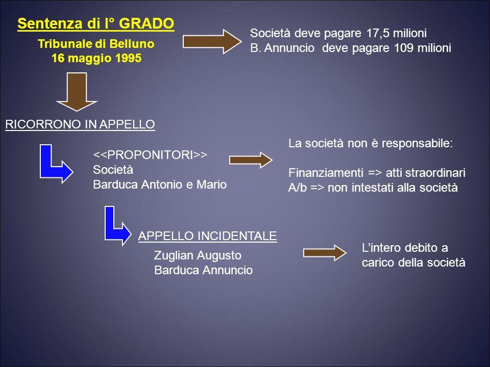 Sentenza di I° GRADO Tribunale di Belluno 16 maggio 1995 Società deve pagare 17,5 milioni B.