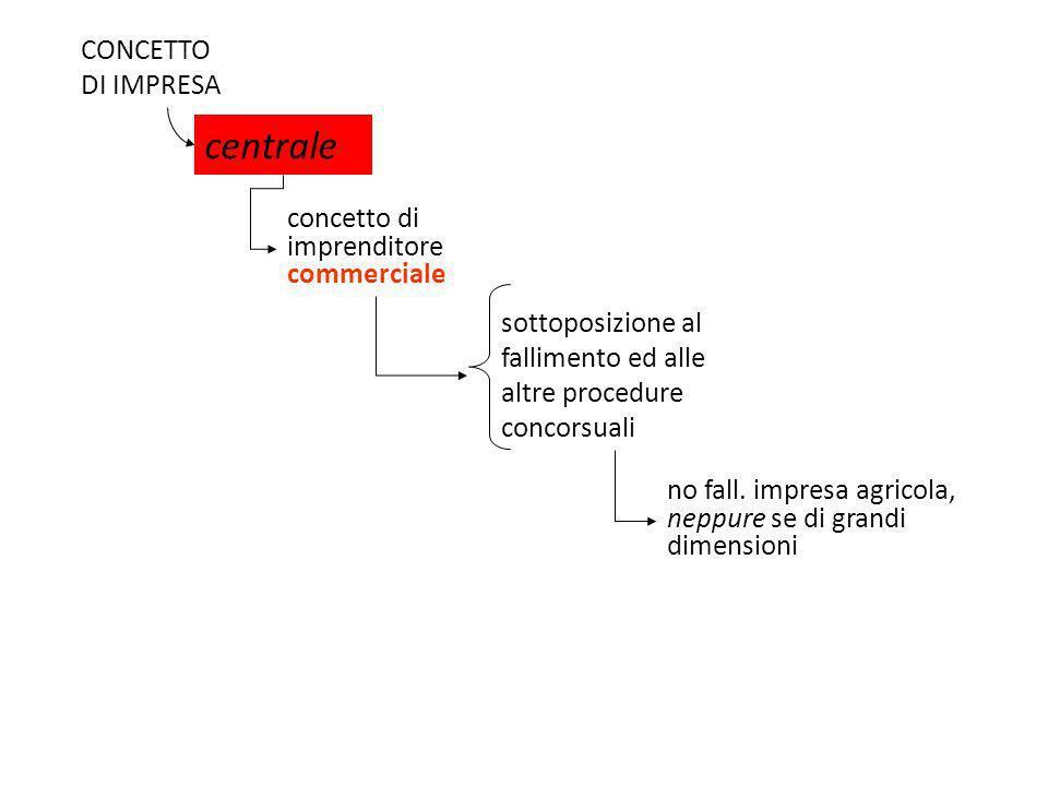 CONCETTO DI IMPRESA centrale concetto di imprenditore commerciale sottoposizione al fallimento ed alle altre procedure concorsuali no fall. impresa ag