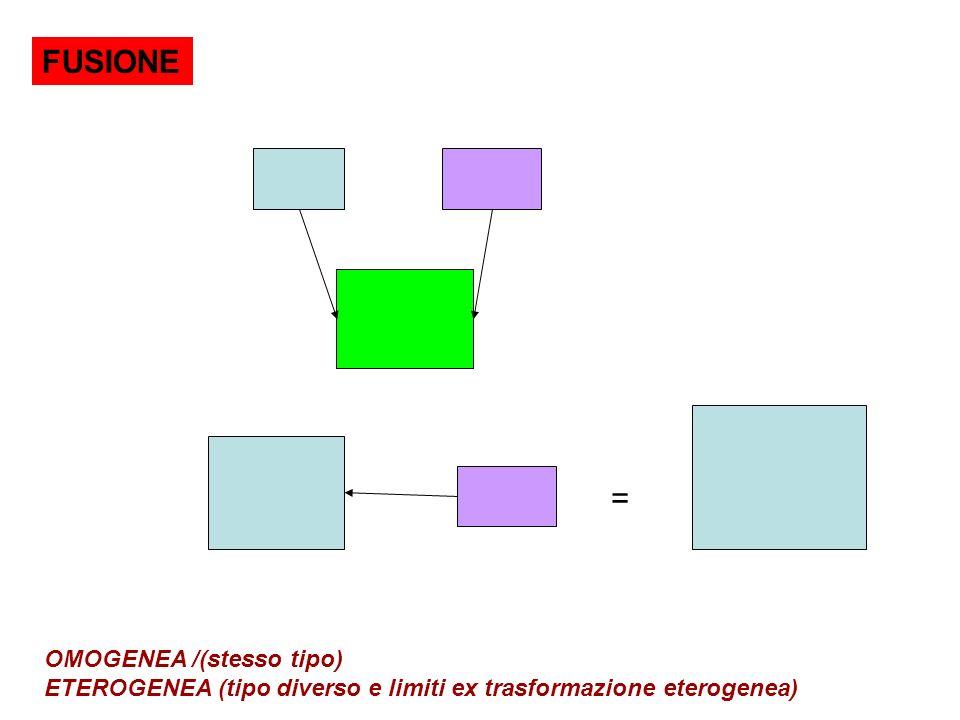 FUSIONE = OMOGENEA /(stesso tipo) ETEROGENEA (tipo diverso e limiti ex trasformazione eterogenea)