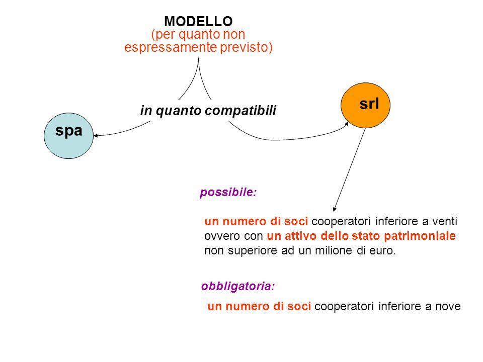 MODELLO (per quanto non espressamente previsto) spa srl in quanto compatibili un numero di soci cooperatori inferiore a venti ovvero con un attivo del