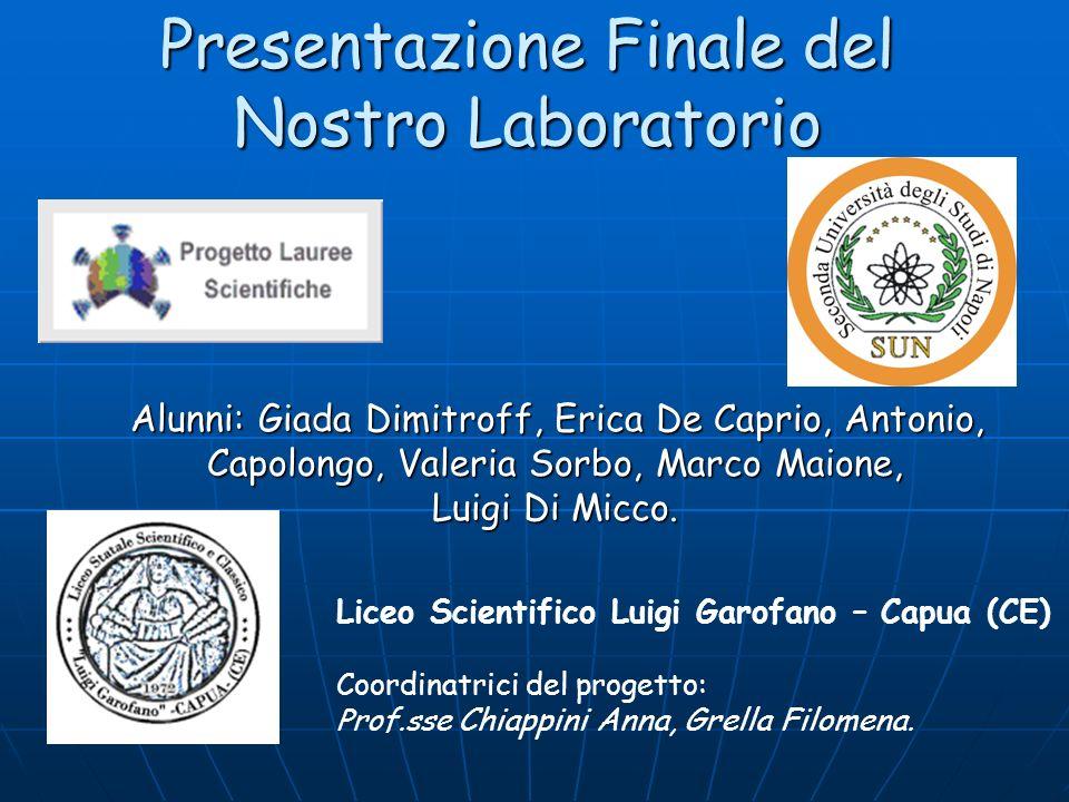 Presentazione Finale del Nostro Laboratorio Alunni: Giada Dimitroff, Erica De Caprio, Antonio, Capolongo, Valeria Sorbo, Marco Maione, Luigi Di Micco.