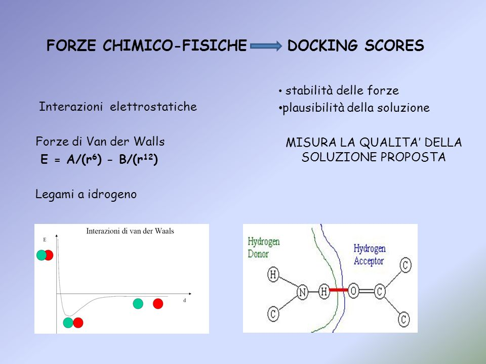 FORZE CHIMICO-FISICHE DOCKING SCORES stabilità delle forze plausibilità della soluzione MISURA LA QUALITA DELLA SOLUZIONE PROPOSTA Interazioni elettro