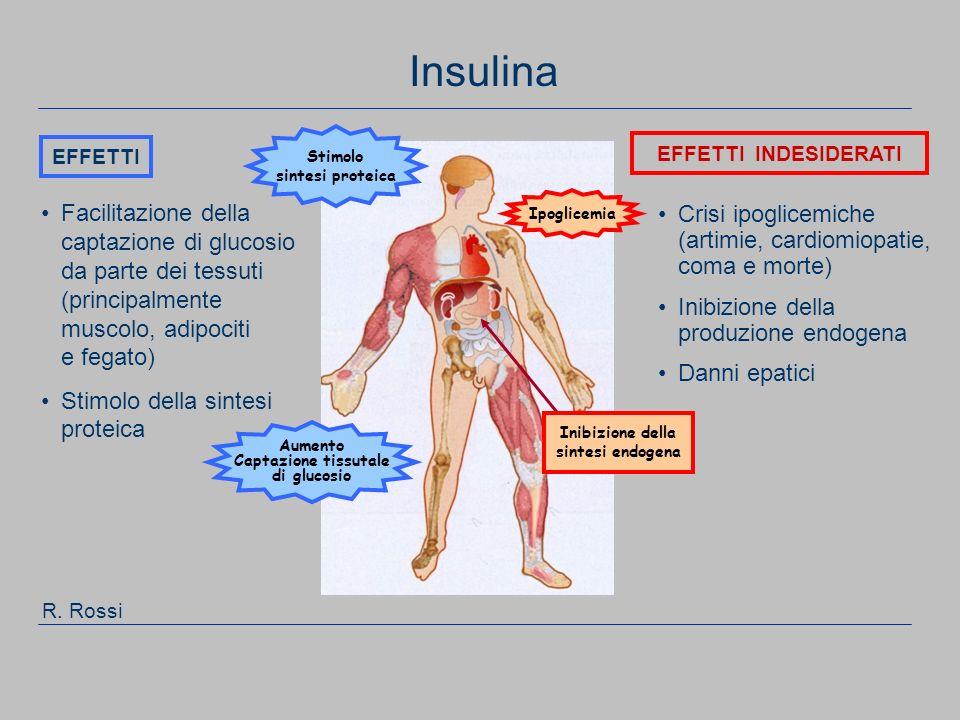 111 Facilitazione della captazione di glucosio da parte dei tessuti (principalmente muscolo, adipociti e fegato) Stimolo della sintesi proteica Crisi