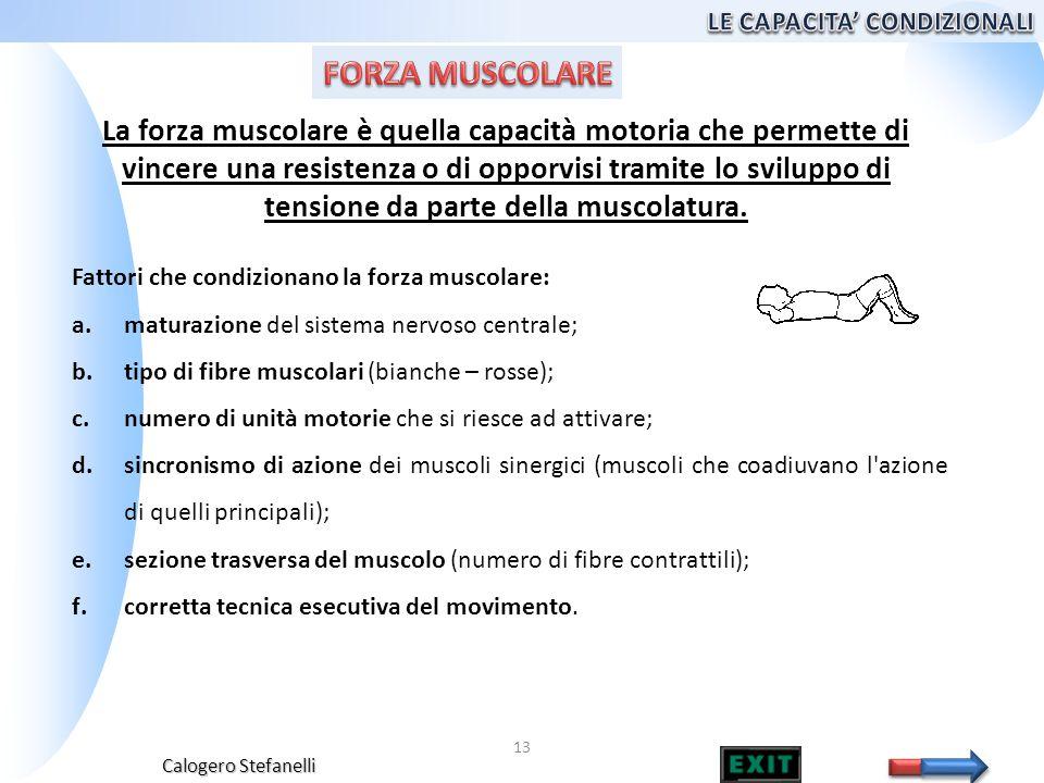 Calogero Stefanelli 13 La forza muscolare è quella capacità motoria che permette di vincere una resistenza o di opporvisi tramite lo sviluppo di tensi
