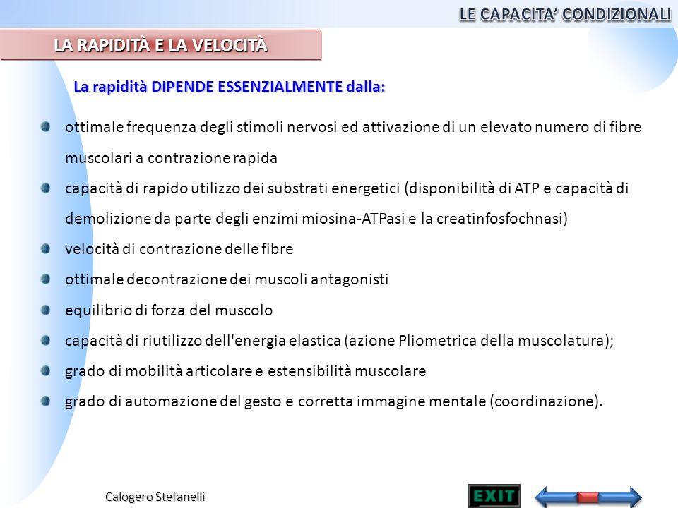 Calogero Stefanelli ottimale frequenza degli stimoli nervosi ed attivazione di un elevato numero di fibre muscolari a contrazione rapida capacità di r