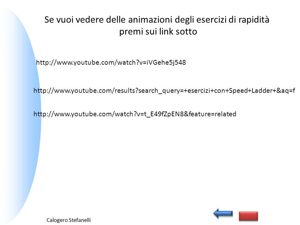 Calogero Stefanelli http://www.youtube.com/results?search_query=+esercizi+con+Speed+Ladder+&aq=f Se vuoi vedere delle animazioni degli esercizi di rap