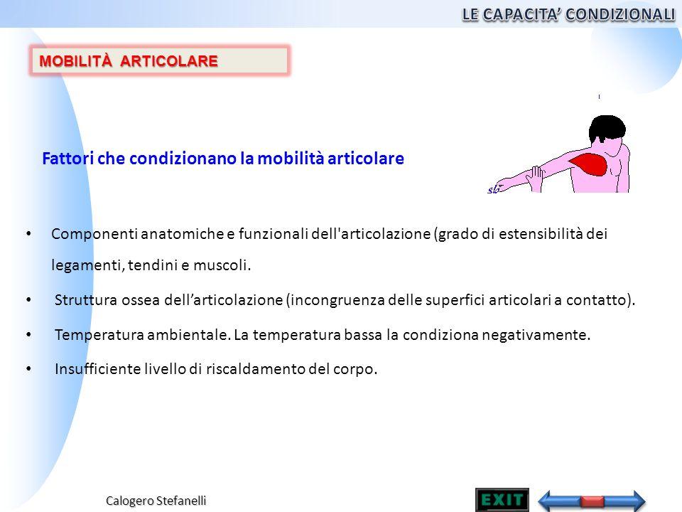 Calogero Stefanelli Componenti anatomiche e funzionali dell'articolazione (grado di estensibilità dei legamenti, tendini e muscoli. Struttura ossea de