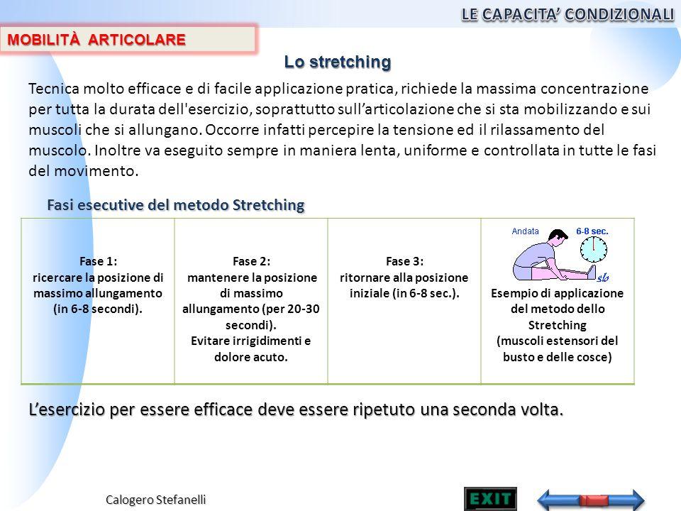 Calogero Stefanelli MOBILITÀ ARTICOLARE Fasi esecutive del metodo Stretching Fase 1: ricercare la posizione di massimo allungamento (in 6-8 secondi).
