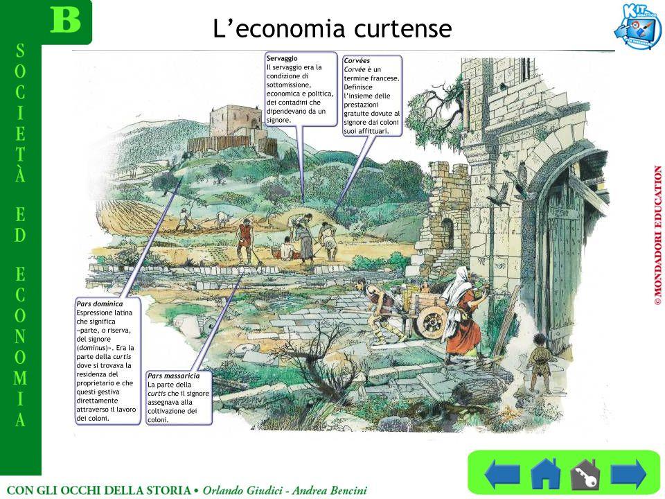 Leconomia curtense
